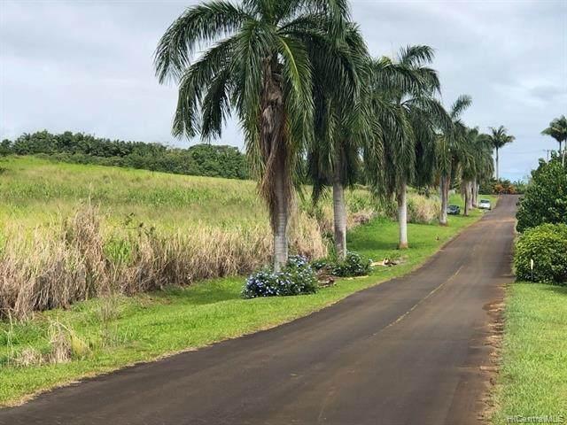 0 Pepeekeo Point, Pepeekeo, HI 96783 (MLS #202109175) :: Corcoran Pacific Properties