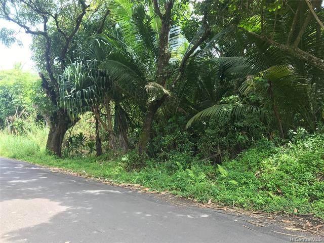 . Government Beach Road, Pahoa, HI 96778 (MLS #202109238) :: Corcoran Pacific Properties
