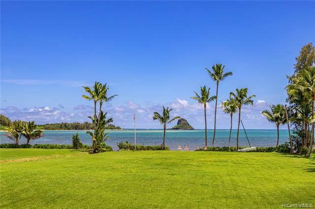 49-015 Kamehameha Highway, Kaneohe, HI 96744 (MLS #202109535) :: Island Life Homes