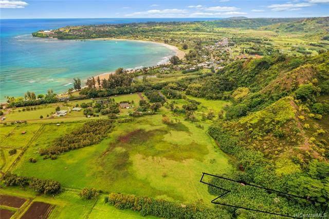 00-000 Kuhio Highway, Hanalei, HI 96714 (MLS #202110651) :: Weaver Hawaii | Keller Williams Honolulu