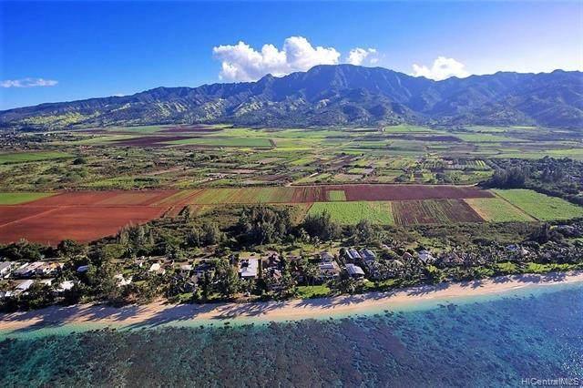 68-569 Crozier Drive, Waialua, HI 96791 (MLS #202112118) :: Corcoran Pacific Properties