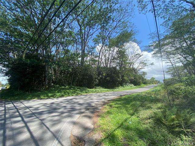 15-1754 19th Avenue, Keaau, HI 96749 (MLS #202112502) :: Island Life Homes