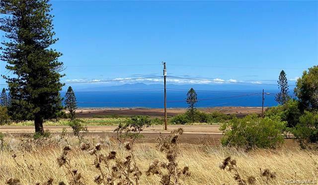0 Mahiki Place, Maunaloa, HI 96770 (MLS #202115748) :: Corcoran Pacific Properties