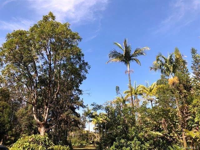 16-1255 Uhini Ana Road, Mountain View, HI 96771 (MLS #202118568) :: Island Life Homes