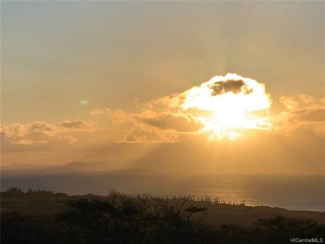 268 Ahiu Road #141, Maunaloa, HI 96770 (MLS #202120220) :: Weaver Hawaii | Keller Williams Honolulu