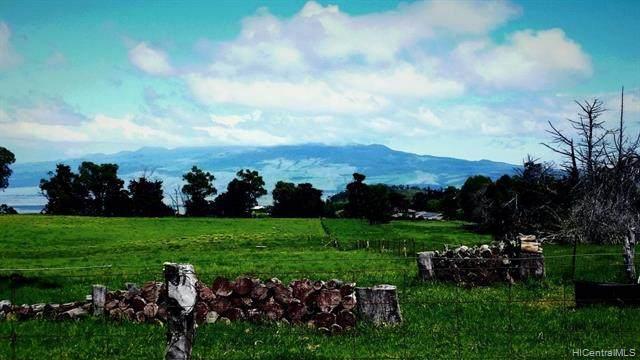 67-1085 Keamuku Road, Kamuela, HI 96743 (MLS #202121402) :: Island Life Homes