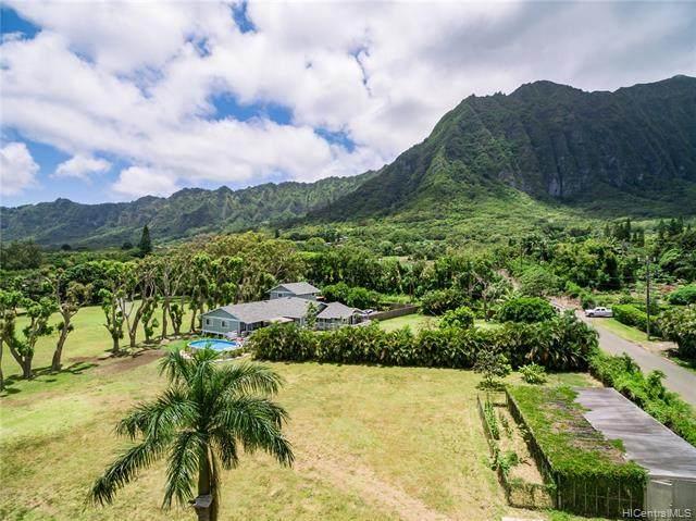 41-587 Makakalo Street, Waimanalo, HI 96795 (MLS #202122028) :: Hawai'i Life