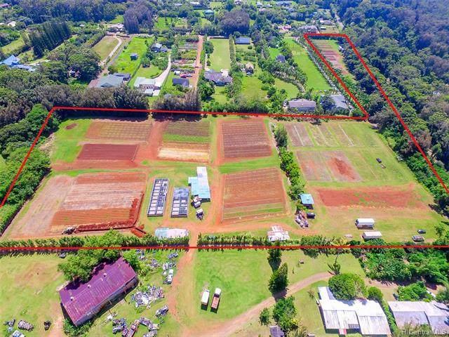 59-705 Pupukea Road, Haleiwa, HI 96712 (MLS #202123125) :: Team Lally
