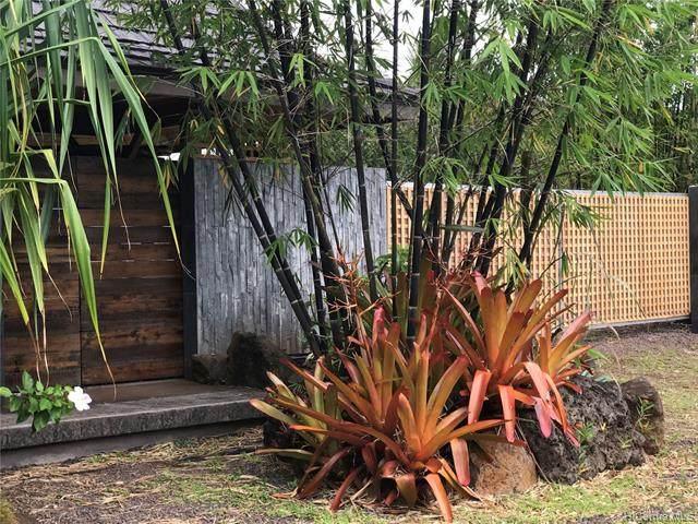 59-606 Alapio Road, Haleiwa, HI 96712 (MLS #202125238) :: Keller Williams Honolulu