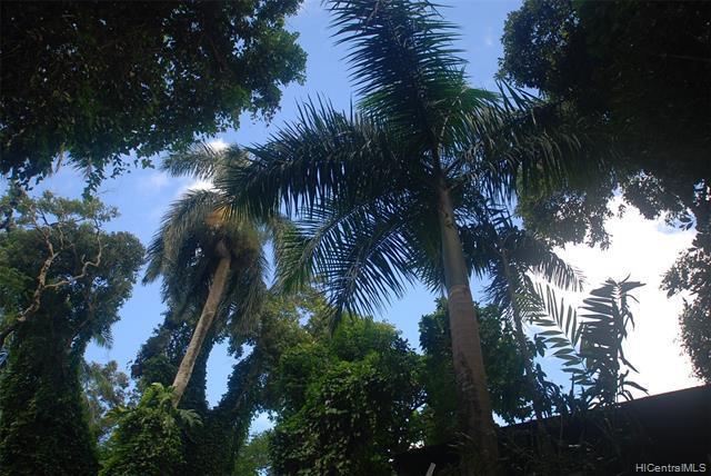71 Country Club Road C, Honolulu, HI 96817 (MLS #201809406) :: The Ihara Team