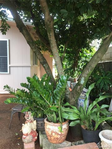 2742 Kalihi Street A, Honolulu, HI 96819 (MLS #201826802) :: Elite Pacific Properties