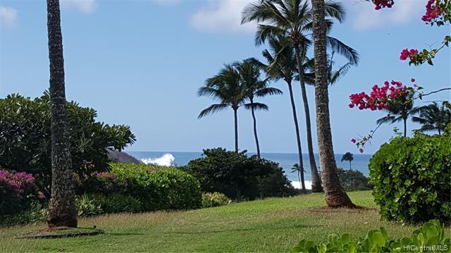 50 Kepuhi Place #128, Maunaloa, HI 96770 (MLS #201900008) :: Keller Williams Honolulu