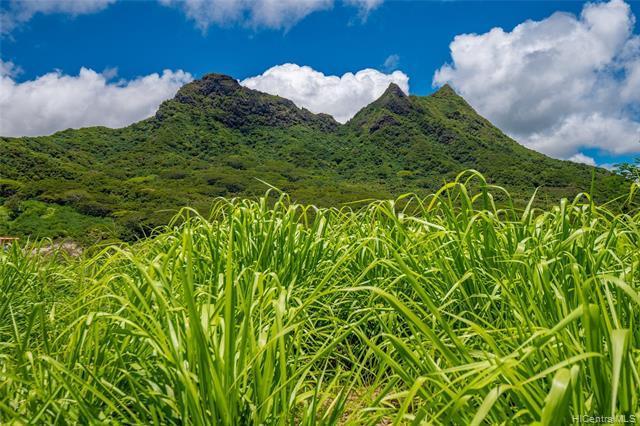 42-100 Old Kalanianaole Road #15, Kailua, HI 96734 (MLS #201914680) :: Team Lally