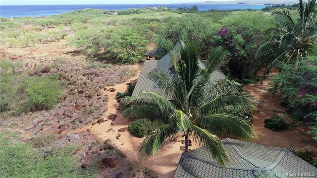 23 Kulawai Place, Maunaloa, HI 96770 (MLS #201926273) :: Barnes Hawaii