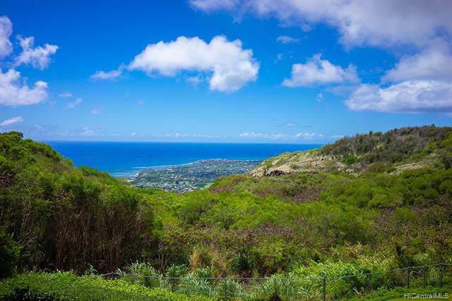 2124 Hakanu Street, Honolulu, HI 96821 (MLS #201927471) :: Barnes Hawaii
