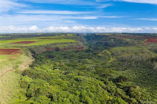 0000 Kamehameha Highway Lot 29, Haleiwa, HI 96712 (MLS #201929144) :: Keller Williams Honolulu