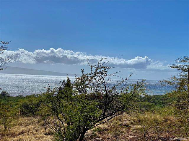 0 Onioni Drive Lot 65, Kaunakakai, HI 96748 (MLS #201932728) :: Keller Williams Honolulu