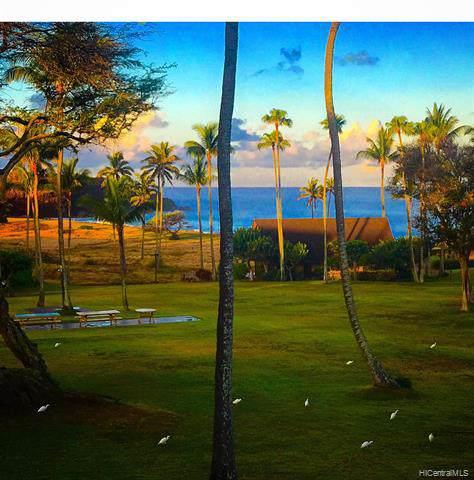 21A06 Kepuhi Place 21A06/2132, Maunaloa, HI 96770 (MLS #201933499) :: Elite Pacific Properties