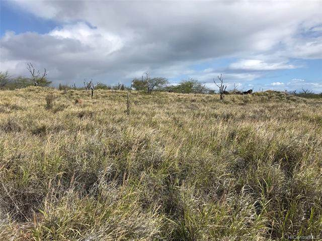 0 Opua Place Lot 11, Kaunakakai, HI 96748 (MLS #202002783) :: Elite Pacific Properties