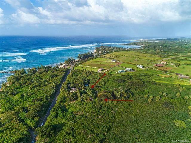 58-038 Kamehameha Highway, Haleiwa, HI 96712 (MLS #202004279) :: Elite Pacific Properties