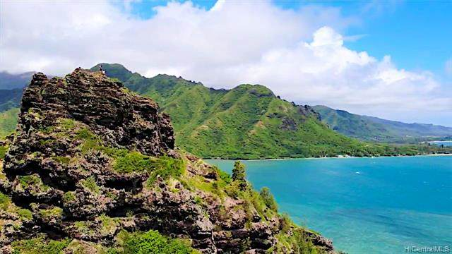 51-636 Kamehameha Highway #416, Kaaawa, HI 96730 (MLS #202014088) :: Elite Pacific Properties