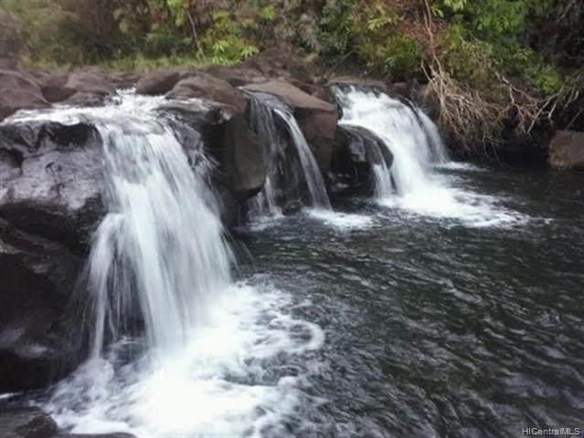 0000 Kaupakuea Hmstd Road, Pepeekeo, HI 96783 (MLS #202100535) :: Barnes Hawaii