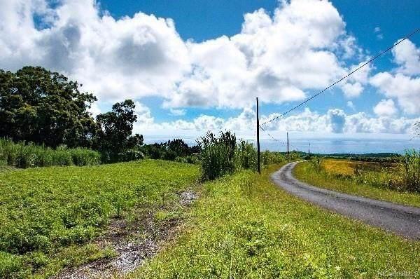 00 Kaupakuea Hmstd Road, Pepeekeo, HI 96783 (MLS #202100564) :: Barnes Hawaii