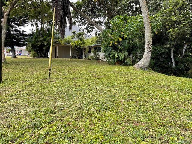 45-648 Hinamoe Loop, Kaneohe, HI 96744 (MLS #202106415) :: Hawai'i Life