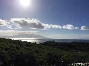 8461 Kamehameha V Highway, Kaunakakai, HI 96748 (MLS #202107988) :: Compass