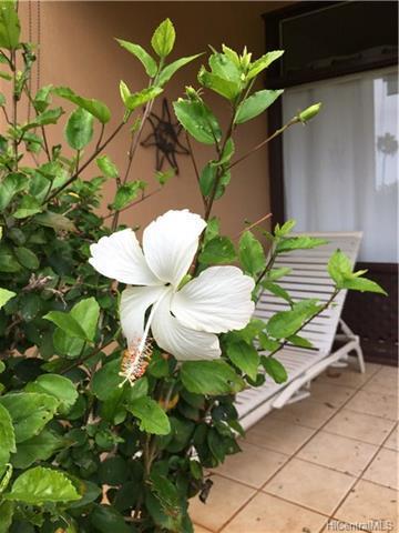 0 Kepuhi Place 17B06 (1176), Manaloa, HI 96770 (MLS #201809375) :: Keller Williams Honolulu