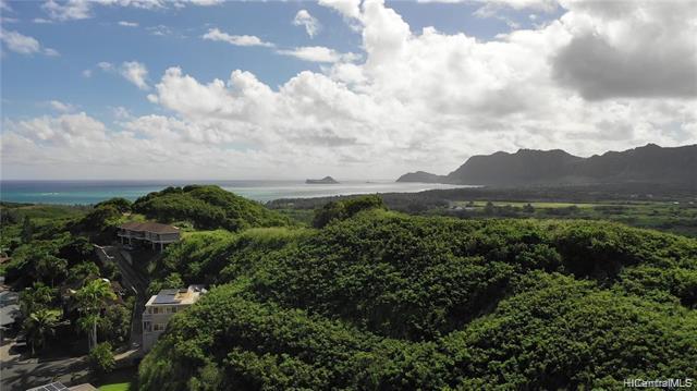 1414 Auwaiku Street, Kailua, HI 96734 (MLS #201831362) :: Elite Pacific Properties