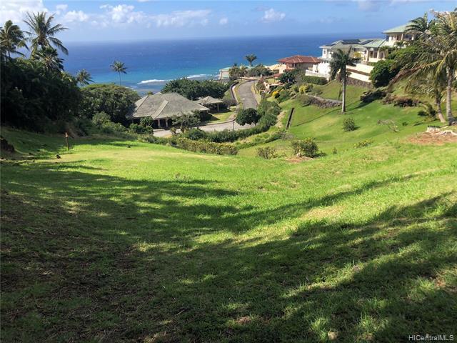 659 Moaniala Street, Honolulu, HI 96821 (MLS #201914271) :: Elite Pacific Properties