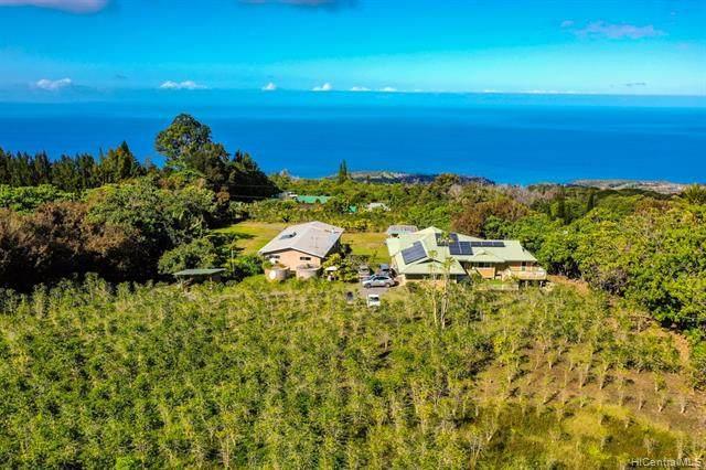 78-6903 Palekana Road, Holualoa, HI 96725 (MLS #202004403) :: LUVA Real Estate