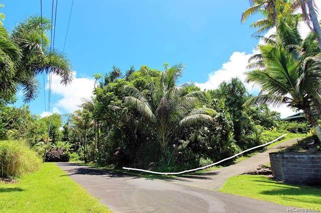 0 Popaa Street, Pahoa, HI 96778 (MLS #202006565) :: Elite Pacific Properties