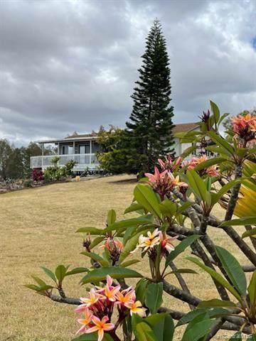 36 Hiipali Loop, Kula, HI 96790 (MLS #202103750) :: Island Life Homes