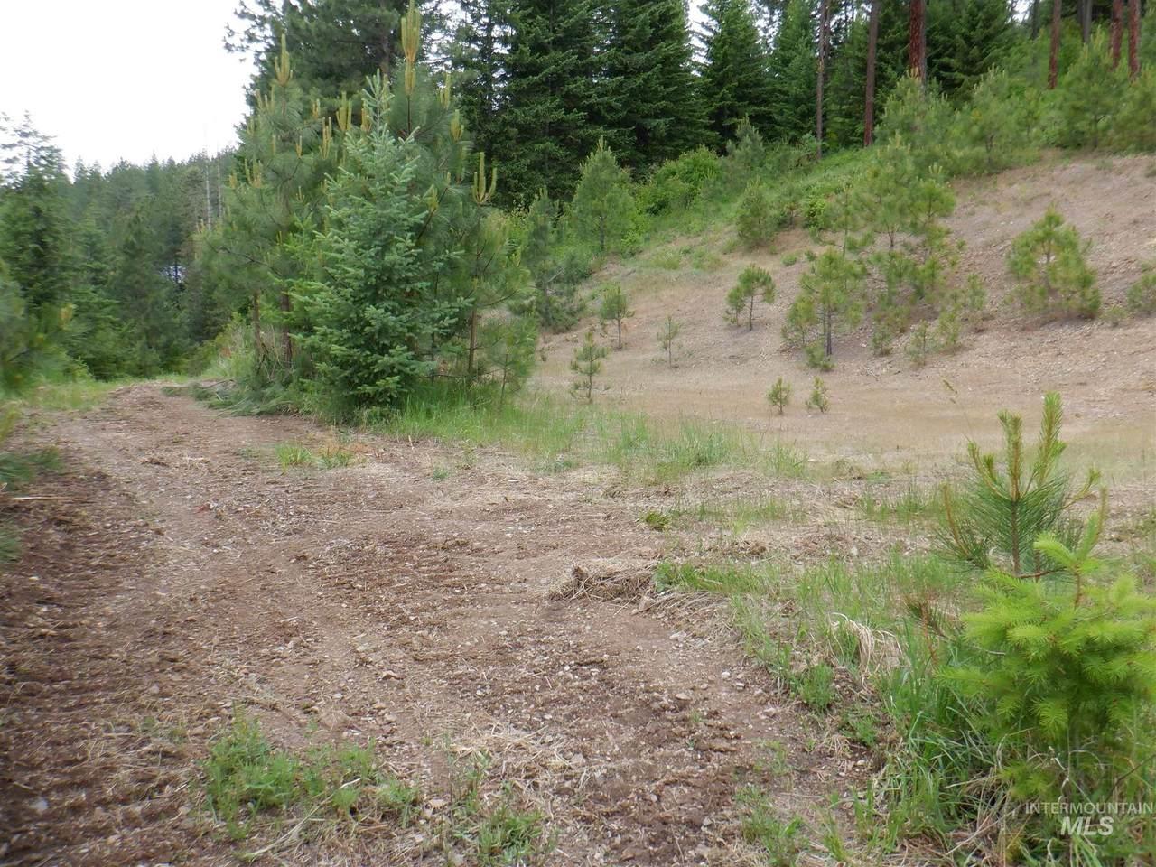 NNA Montana St Lot 1 - Photo 1