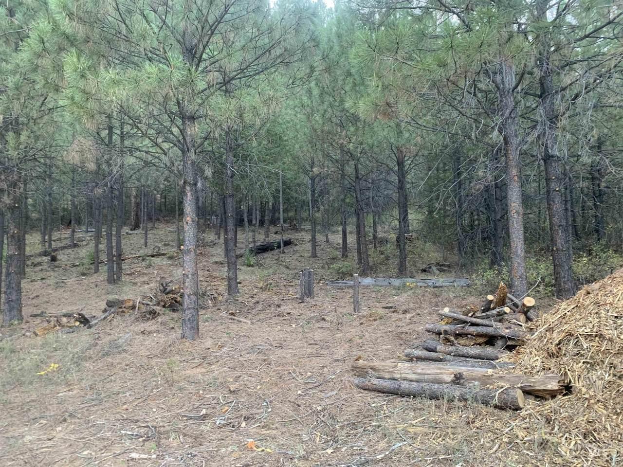 Lot 4 Plateau Ct. - Photo 1