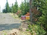 TBD Elk Summit Properties Parcel 6 - Photo 10