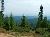 TBD Elk Summit Properties Parcel 6 - Photo 16