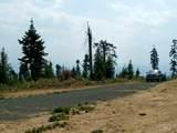 TBD Parcel 7 Elk Summit - Photo 19