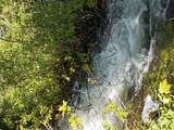 TBD Anderson Creek Rd - Photo 8