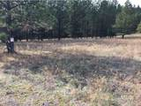 Lot 30 & 31 Elk Run Rd - Photo 3