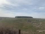 TDB Farmway Road - Photo 5