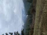 316 Suttler Creek - Photo 2