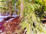 15433 Rustic Ridge Trl - Photo 31
