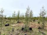 TBD Wildwood Estates Parcel E - Photo 2