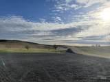17725 Morscheck Road - Photo 31