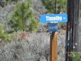 24 Timothy Place - Photo 11