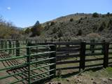 28261 Oxman Ranch Rd - Photo 6