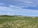 TBD Duffield Flat Rd - Photo 1